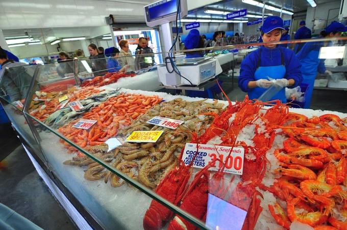 Thậm chí, bạn có thể ngửi thấy mùi của đồ biển dù chưa kịp nhìn thấy cánh cổng chợ. Đủ loại tôm, cua, cá... bày trong tủ kính cho thực khách chọn thoải mái.