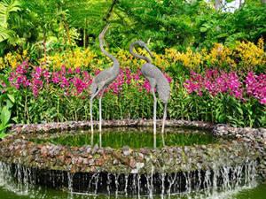 Vườn thực vật Singapore - VTQ Team