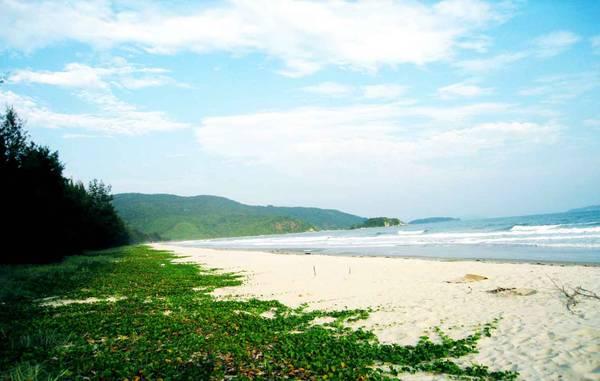 Bãi biển ở đây rất hoang sơ và hầu như chưa có sự can thiệp của các dịch vụ du lịch. Ảnh: ST
